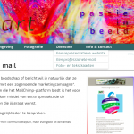 Screenshot van een representatieve website